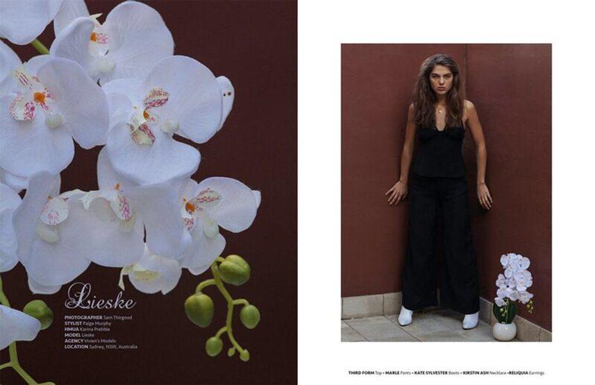 Lieske portfolio image